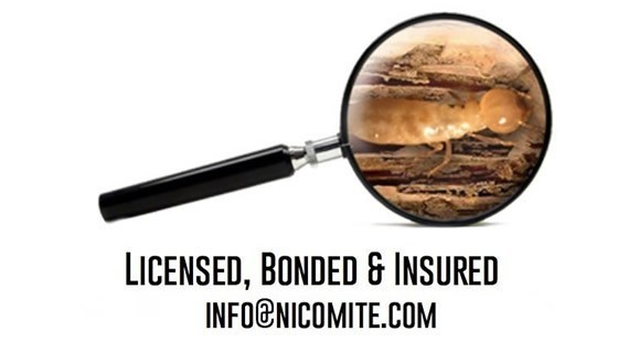 Licensed, Bonded, and Insured with magnifying glass showing a termite