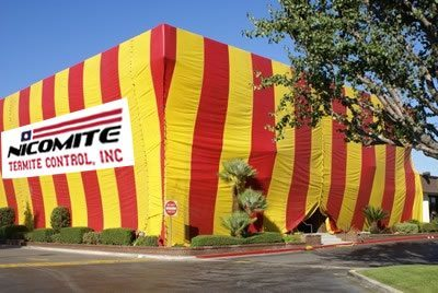 Nicomite tent over house for fumigation